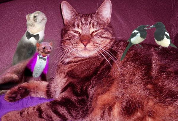 chatte gicle partout